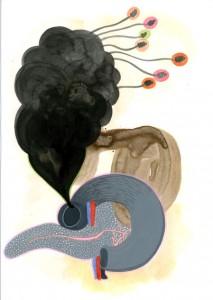 4 la bile noir